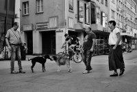 Hundefreunde (1).jpg