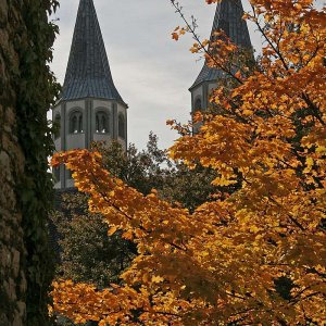 Goslar Herbst digital